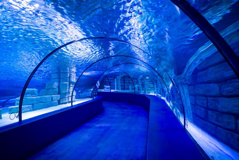 aquarium tunnel in Antalya in Turkey