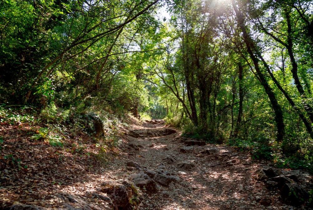 Road Ruins of Termessos in Antalya in Turkey