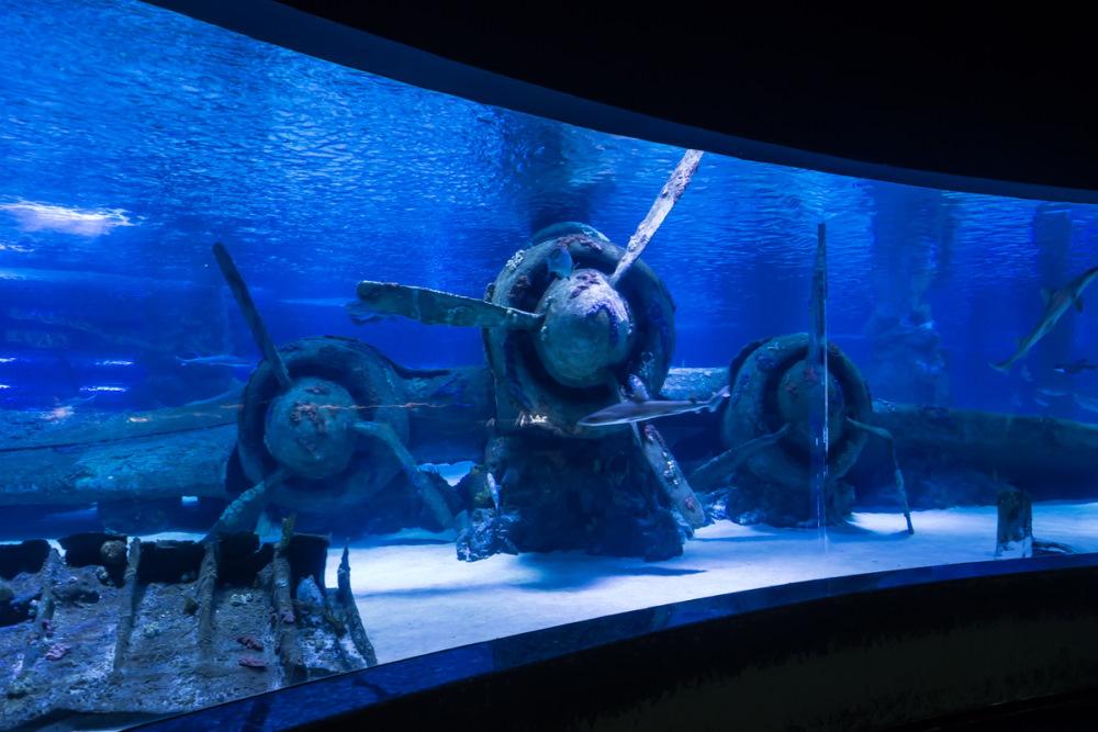 Antalya Aquarium in Antalya in Turkey