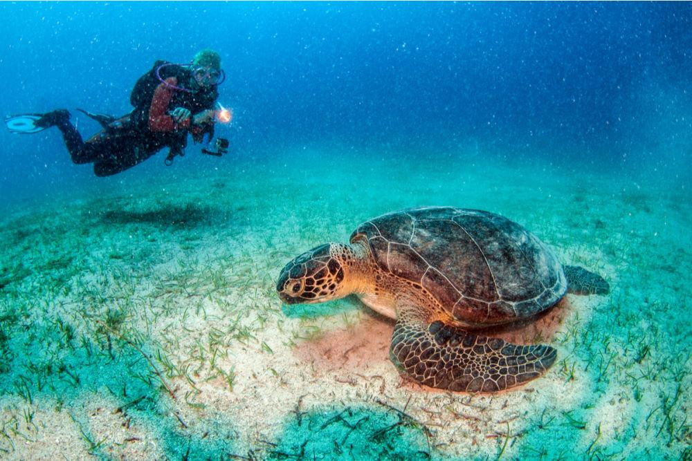 Scuba Diving in Antalya in Turkey